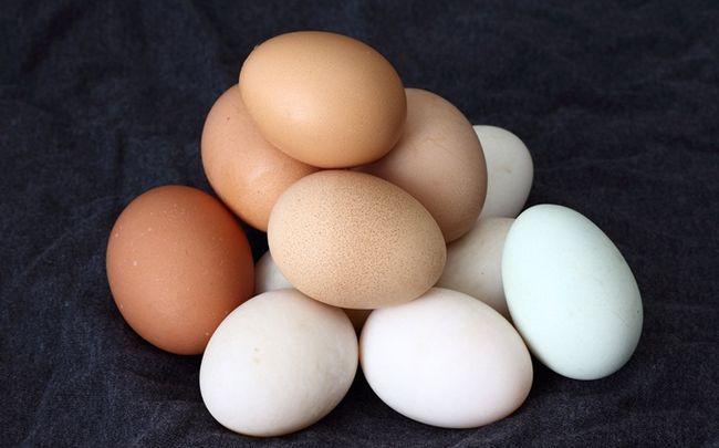 Zitrone für Haarausfall - Zitronensaft, Ei und extra natives Olivenöl