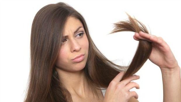 Fokus auf die Haarenden downloaden
