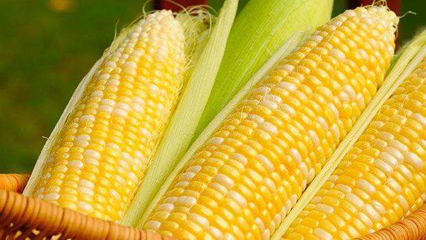 Mais und Artischocken