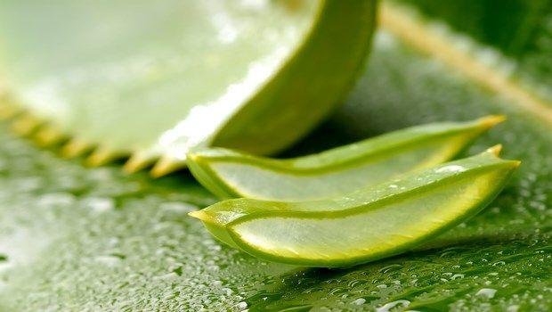wie man die Haut Aloe Vera aufzuhellen
