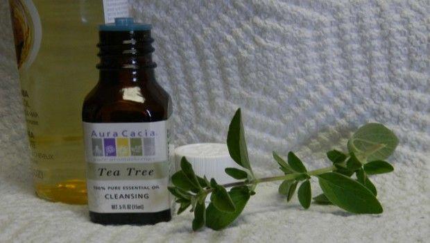 Teebaumöl vorteile: 16 vorteile für haut, haare und gesundheit