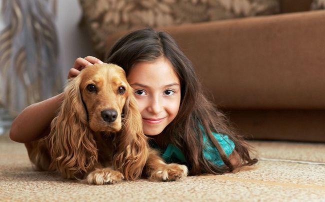 Tipps für ein glückliches Leben - ein Haustier