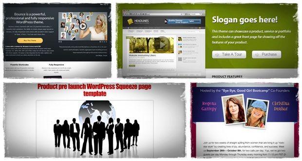 Wordpress Squeeze-Seite Thema mit Wordpress Squeeze-Seite-Plugin